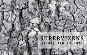 Recensione di Nature and Culture dei Supervixens